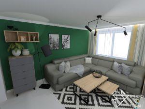 salon z zieloną ścianą
